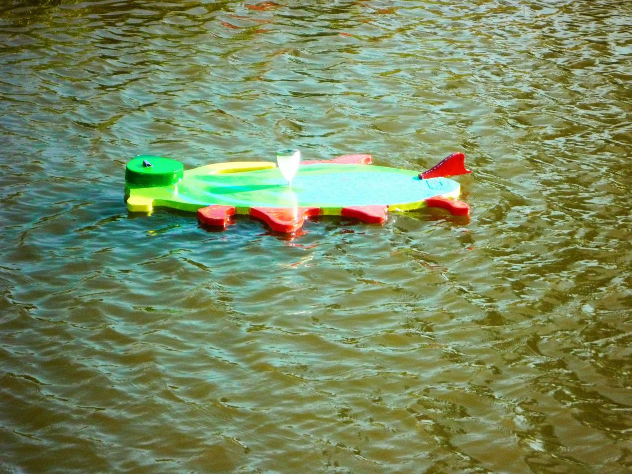 Petit dauphin nageant sur l'eau