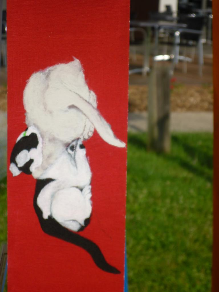 2 chatons jouant au judo sur fond rouge (seconde prise par la tête)