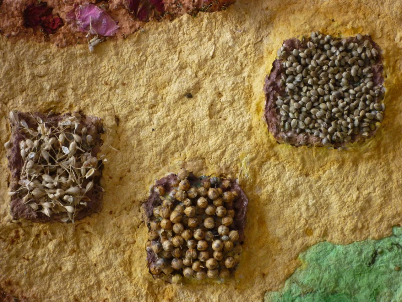 Graines du potager sur papier de lin et chanvre, pigments naturels