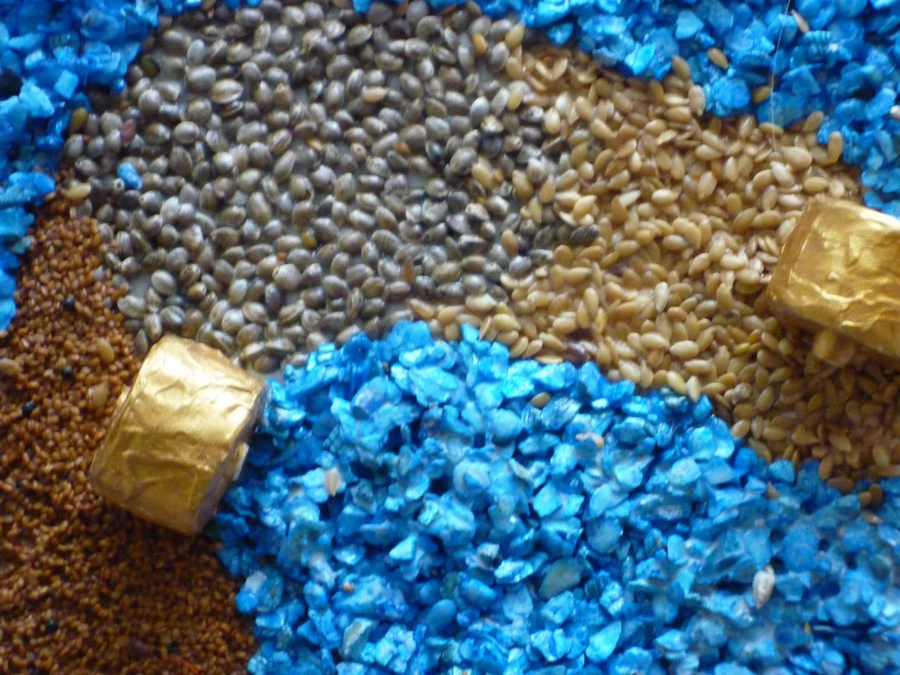 Petites meules sur graines de lin,cameline,sarasin et tournesol