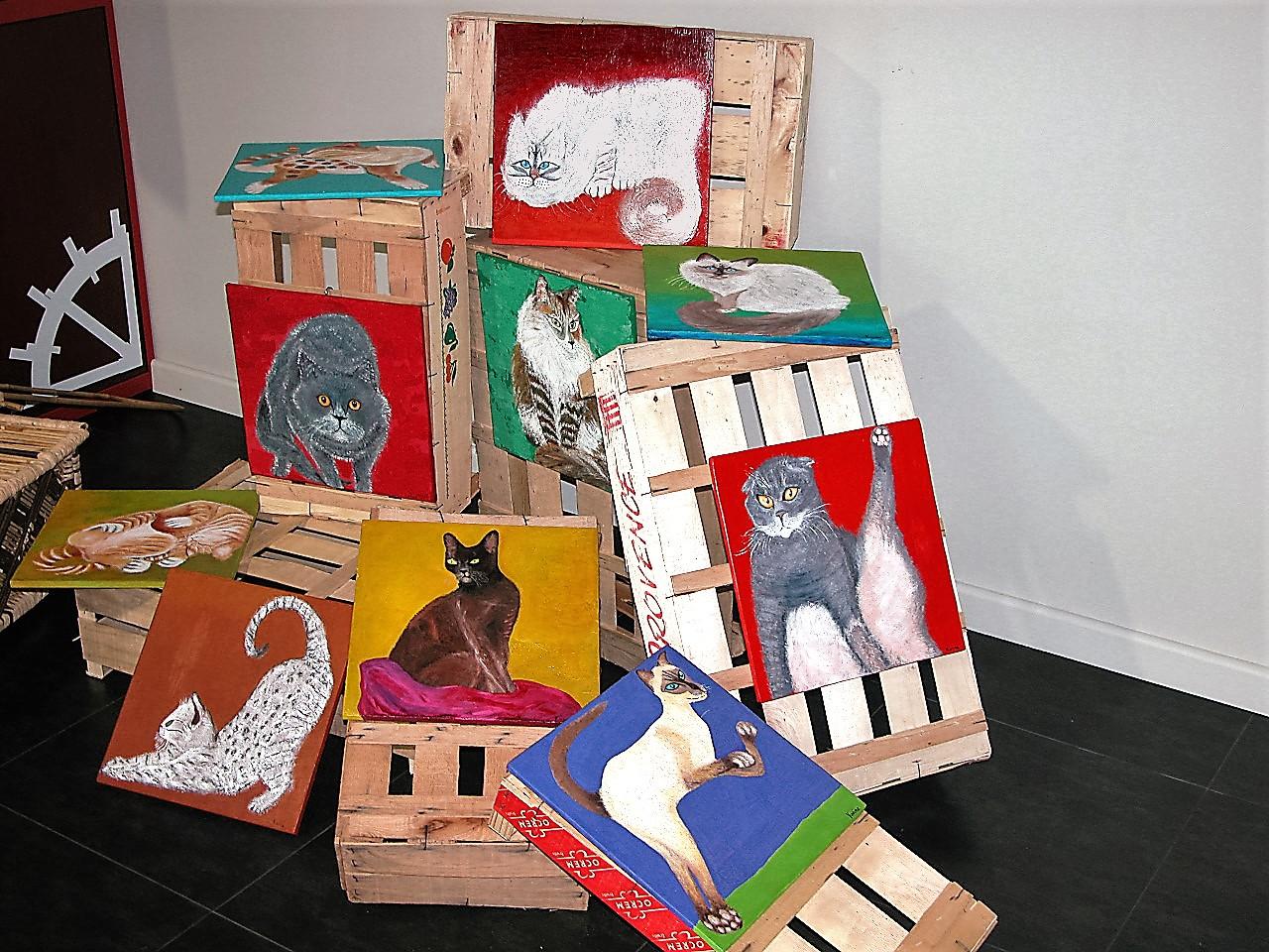 Chats du moulin sur cagettes (2008)