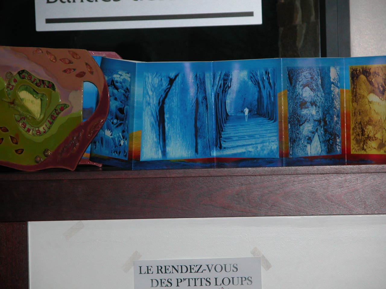Livre Géant de 13 mètres  3( installation in Situ médiathèque )