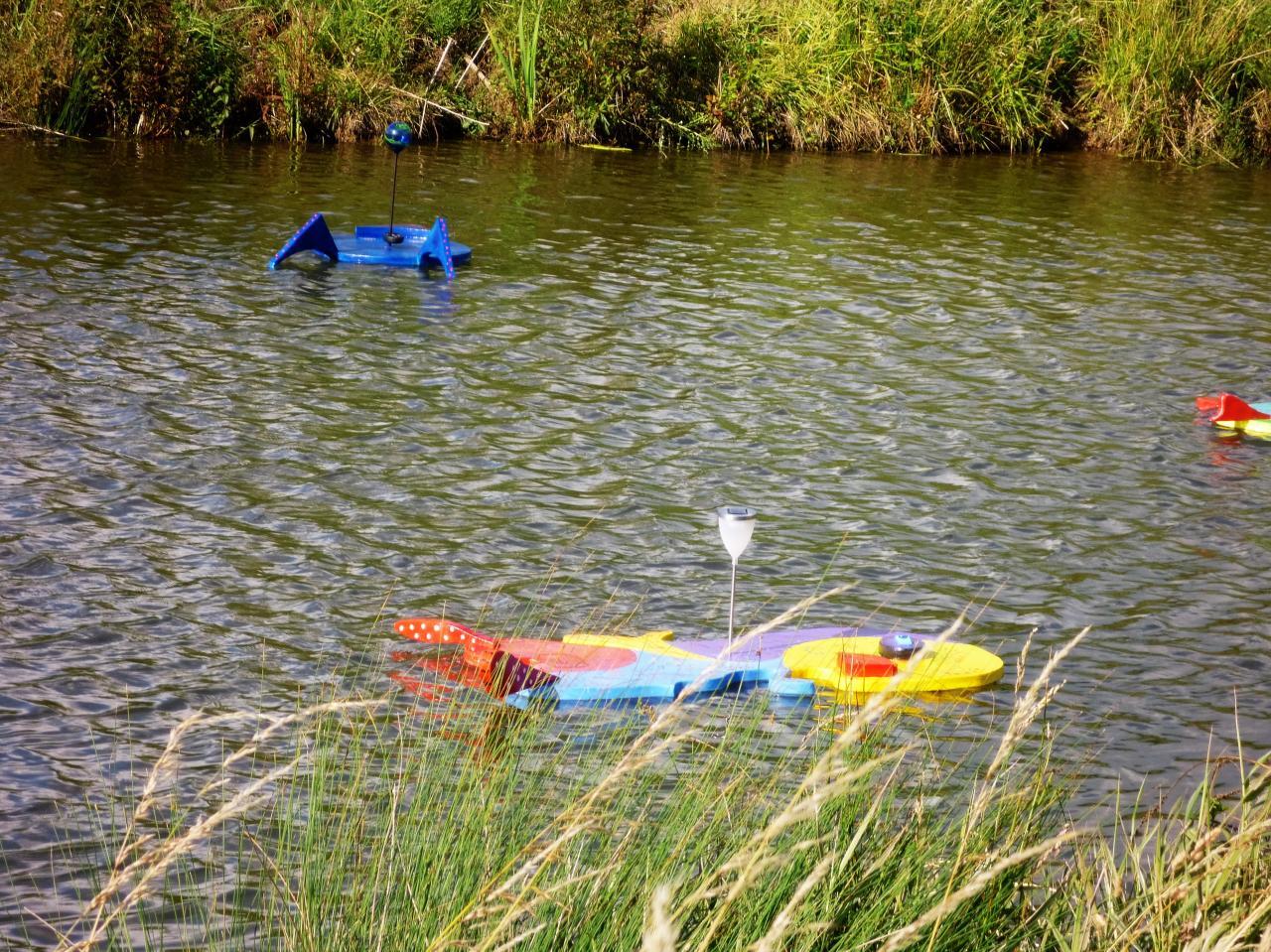 Petit poussin d'or et grenouille bleue sur l'étang