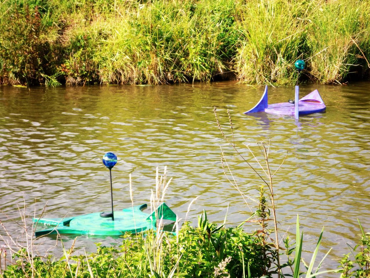 Grenouille verte et grenouille violette sur l'étang