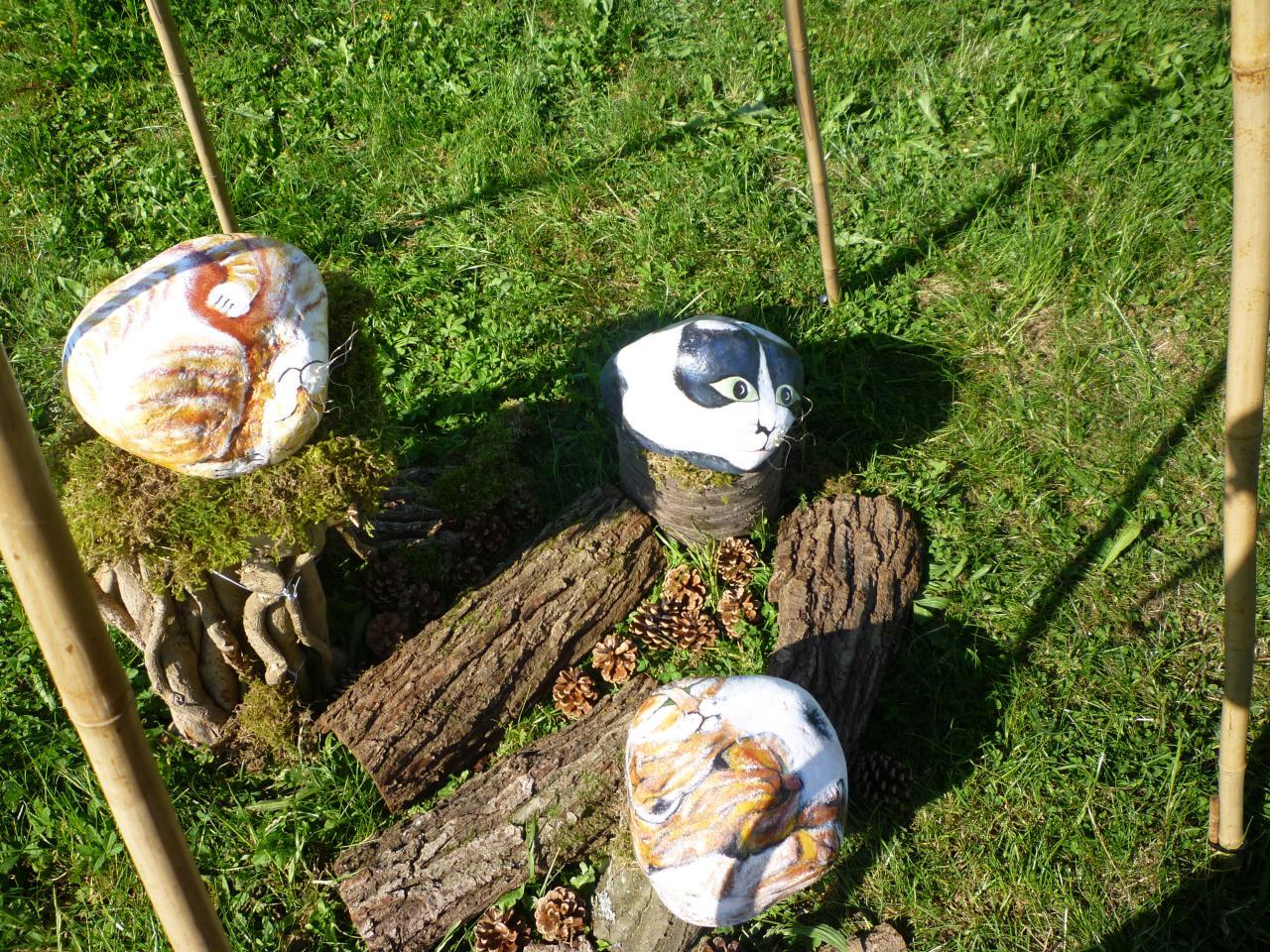 3 galets chats sur rondins de bois dans leur tipi