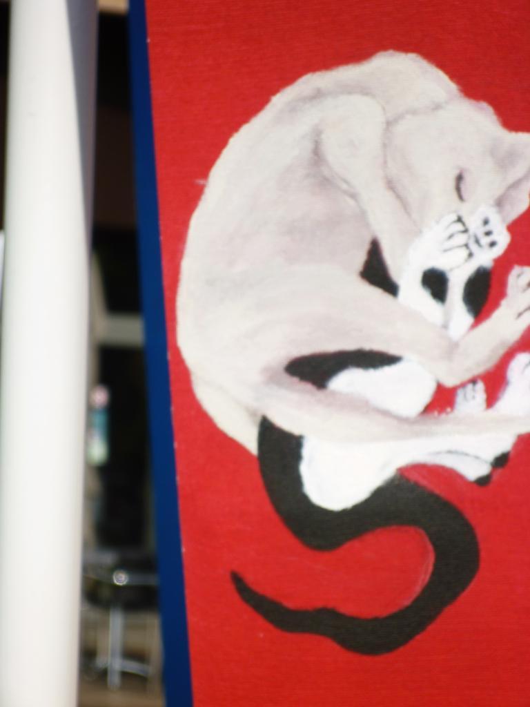 2 chatons jouant au judo sur fond rouge (tissu pour store)
