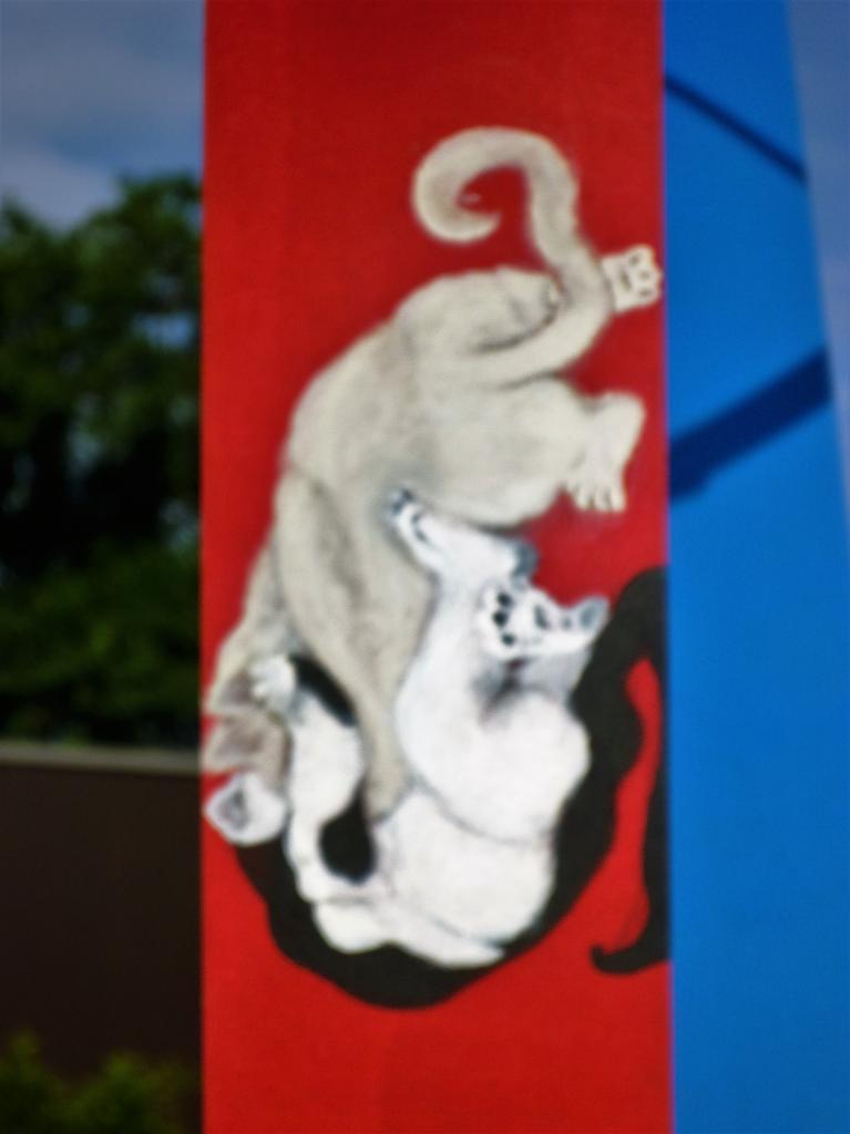 2 chatons faisant de la lutte romaine sur fond rouge