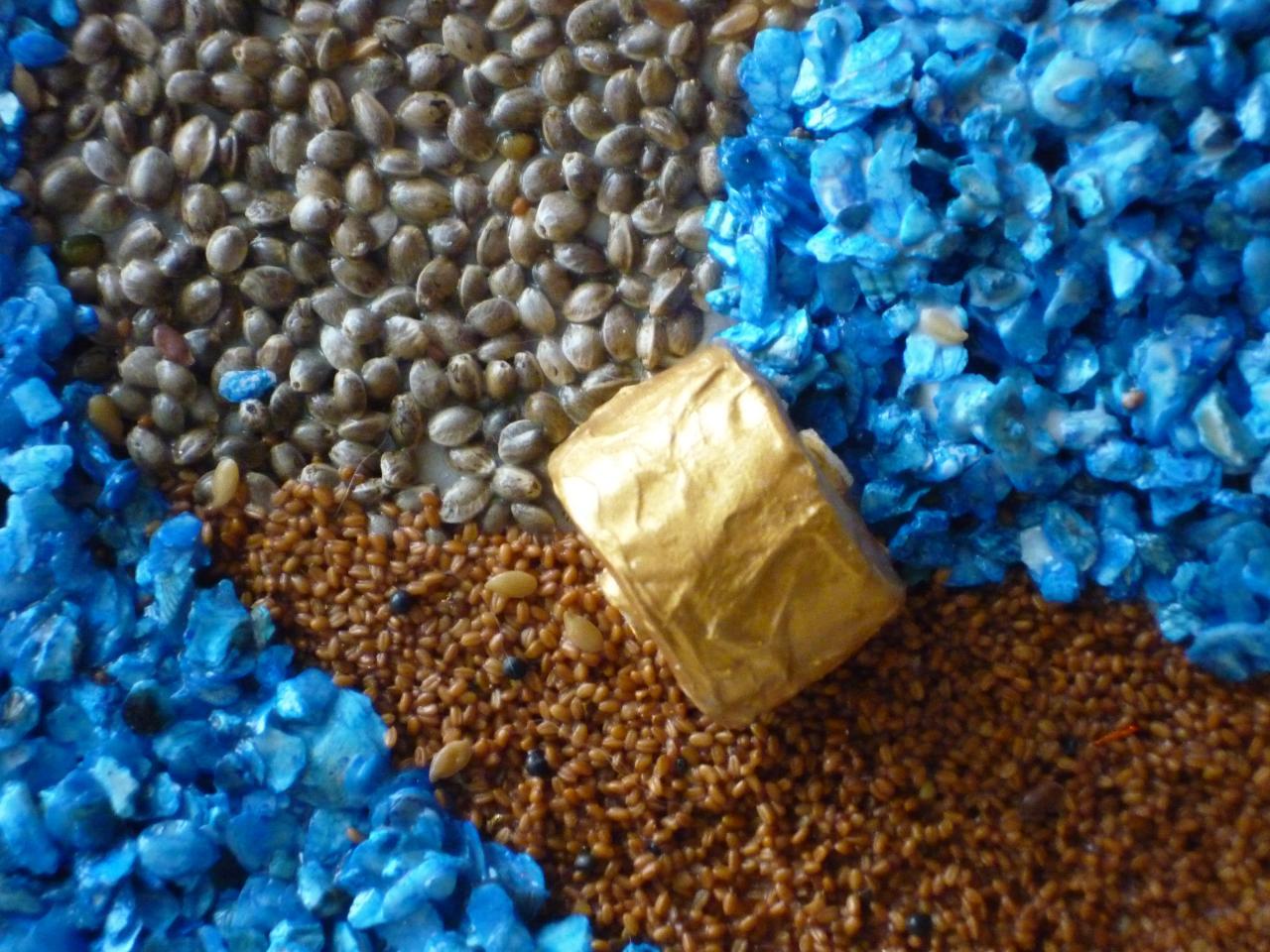 Petite meule sur graines (cameline,sarasin,tournesol),cailloux bleus
