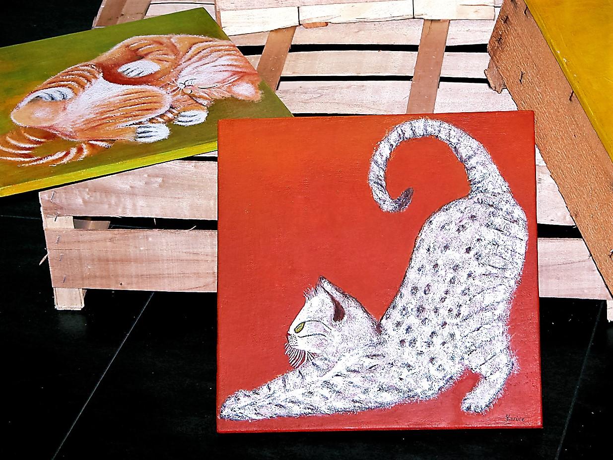 Chat égyptien et Chat roux et blanc sur cagettes